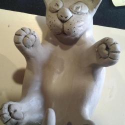 Le chat, les 4 pattes en l'air