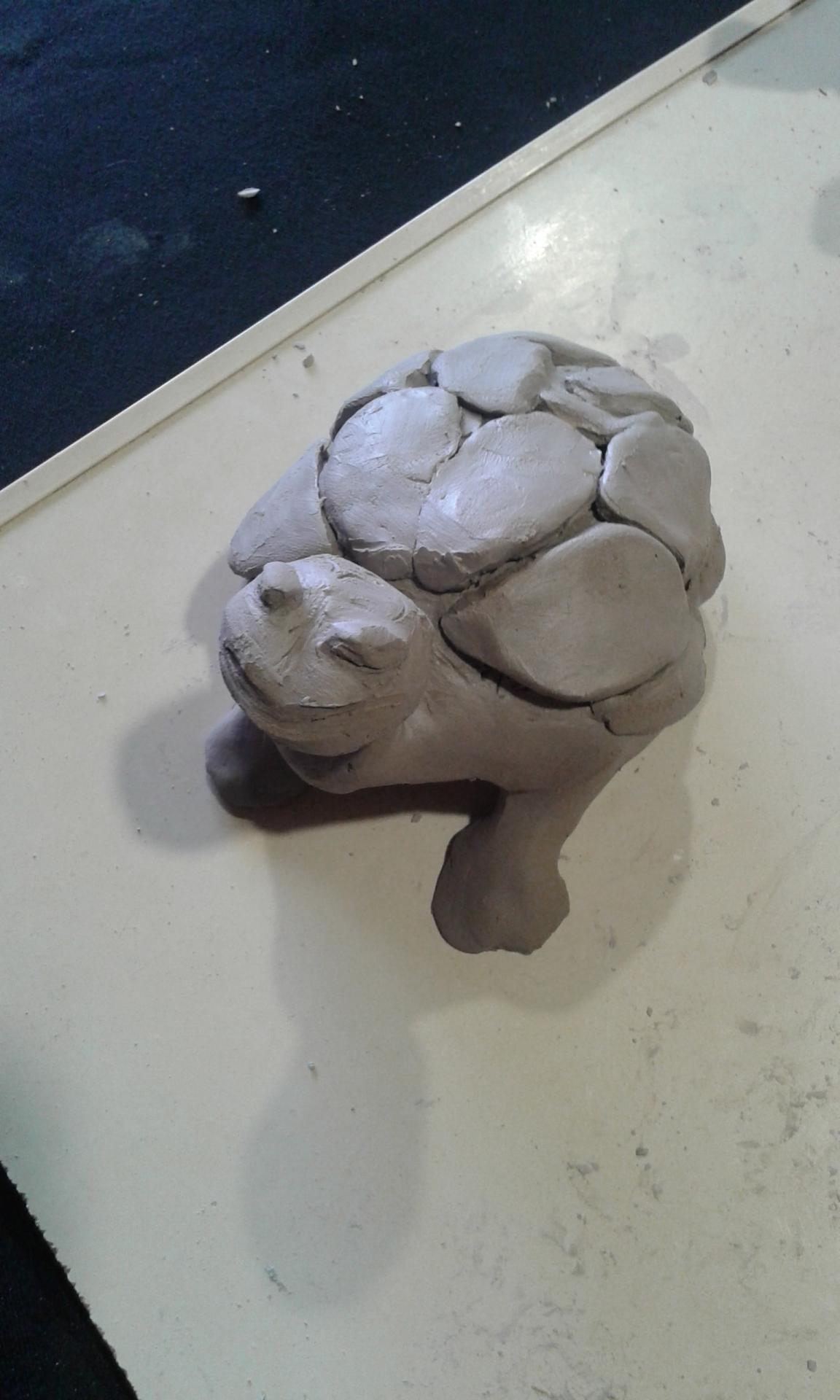La tortue 2, bien ancrée sur ses pattes