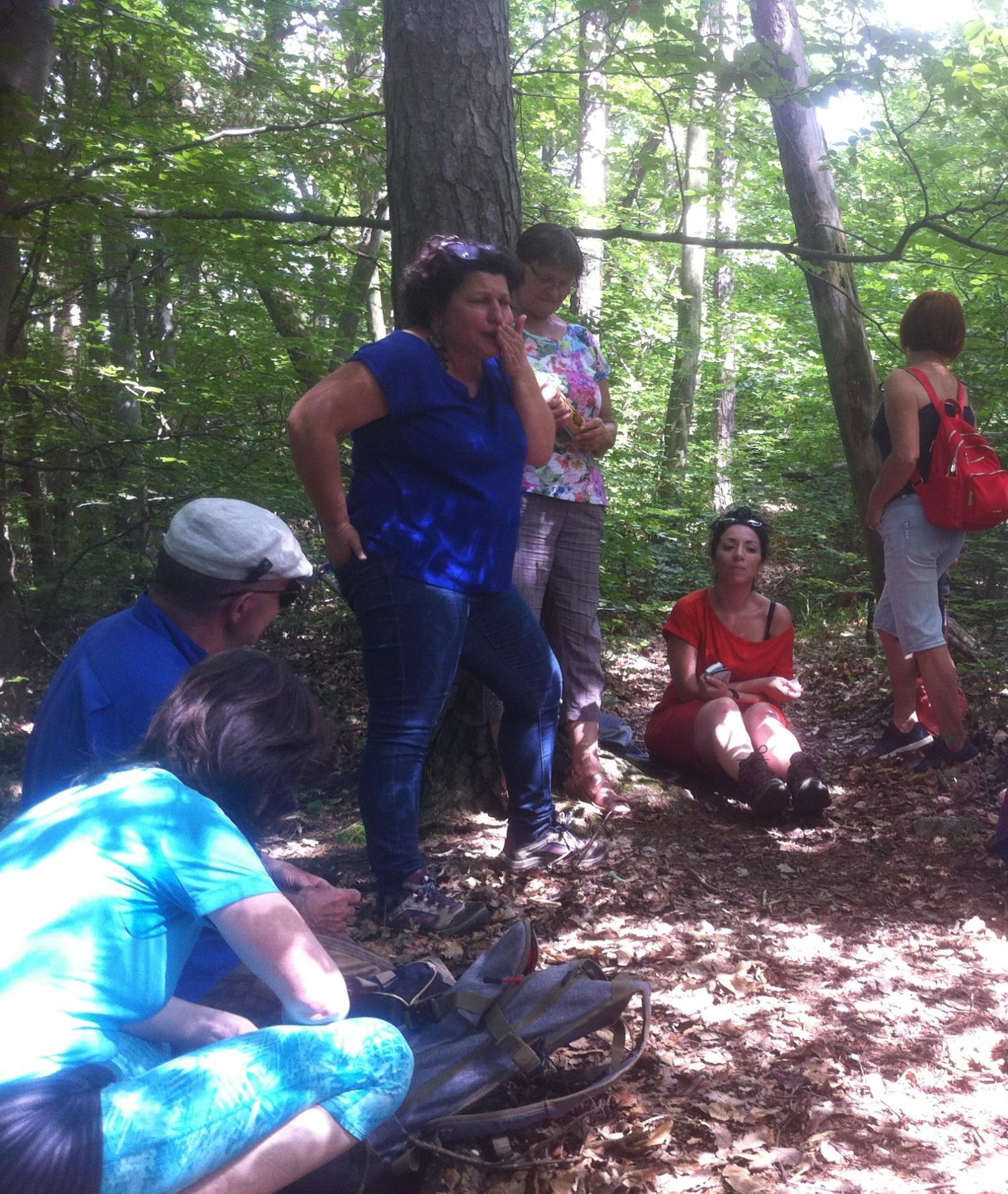 Dans les bois : Conte de Pierre et la sorcière