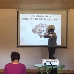 Les bienfaits de la méditation sur le cerveau