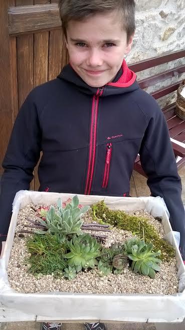 Jardin végétal et minéral 3